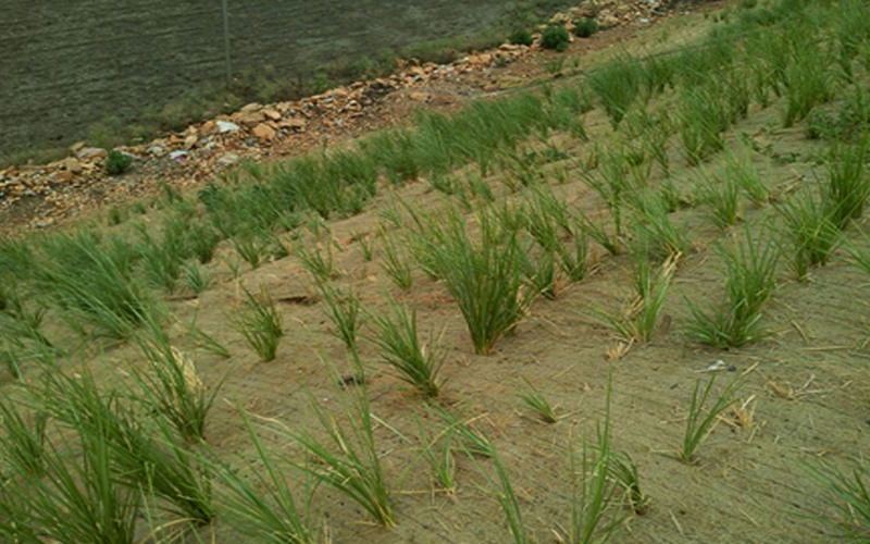 Reinforced Soil Slopes and Erosion Protection